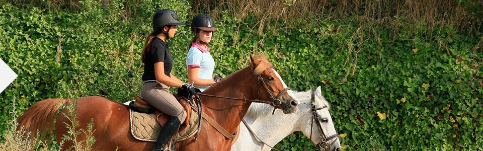 image-liste-activites-equitation